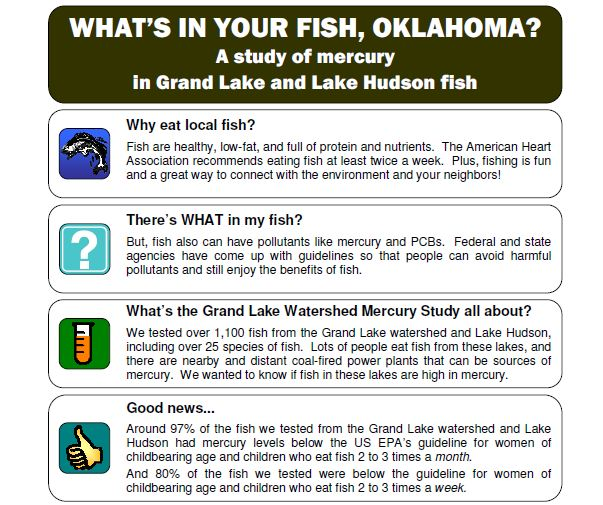 Whats_In_Your_Fish Fact Sheet
